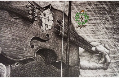 Concert vioara susote